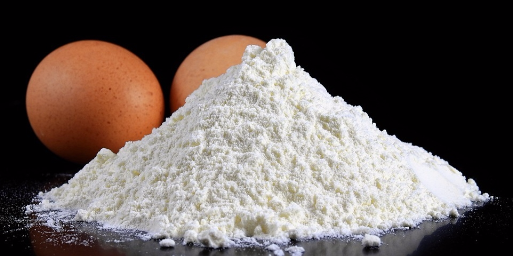 Egg White Protein Powder for Muscle Growth