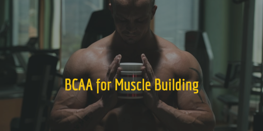 Muscle Building and BCAA